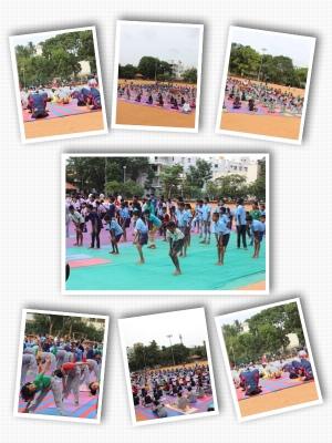 yoga_collage2
