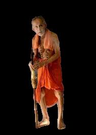 ನೆನೆದವರ ಮನದಲ್ಲಿ ಪೇಜಾವರ ಶ್ರೀಗಳು